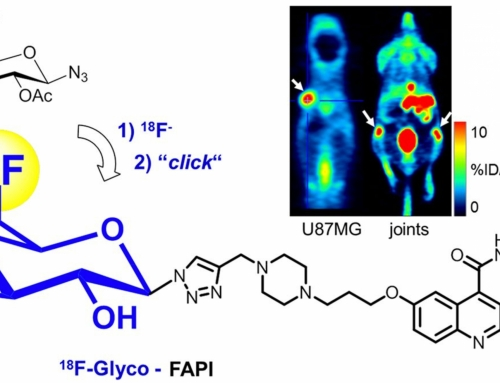 Targeting Fibroblast Activation Protein: Radiosynthesis and Preclinical Evaluation of an 18 F-Labeled FAP Inhibitor